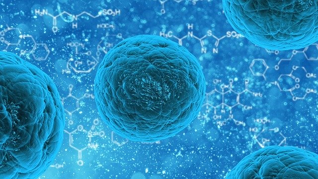 virové buňky